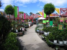 PLANT CENTER DISPLAYS FOR RETAIL - love the signs and rolling display beds
