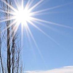 Mid day sun Sun spikes by R Wozney Photography  crated.com/rwozney