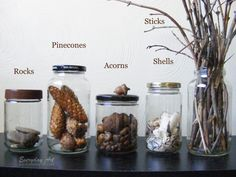 jars for when kids collect things | Everyday Art: Organized Collection