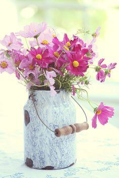 Pretty flowers in pink Cosmos Flowers, My Flower, Flower Vases, Fresh Flowers, Flower Power, Wild Flowers, Beautiful Flowers, Cosmos Plant, Spring Flowers