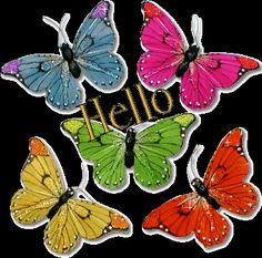 Hello Gifs images and Graphics. Hello Pictures and Photos. Butterfly Gif, Hello Photo, Frida Art, Hello Goodbye, Glitter Graphics, Very Happy Birthday, Beautiful Butterflies, Animated Gif, Picture Quotes