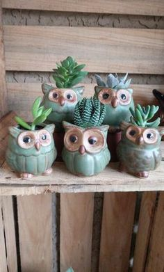 Read information on container gardening Plastic Bottle Flowers, Diy Plastic Bottle, Ceramic Owl, Ceramic Pottery, Clay Projects, Clay Crafts, Painted Clay Pots, Clay Birds, Pot Plante