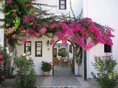 bougainvillea- had plenty of this growing up in California Bougainvillea, Spanish Garden, Spanish Style Homes, Vintage Roses, Garden Inspiration, Backyard Landscaping, Outdoor Spaces, Indoor Outdoor, Climbing Roses