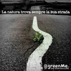 La natura trova sempre la sua strada. http://www.greenme.it/
