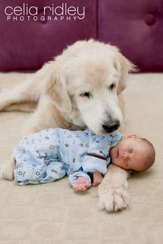Snuggley Babies and Puppy Dogs = <3