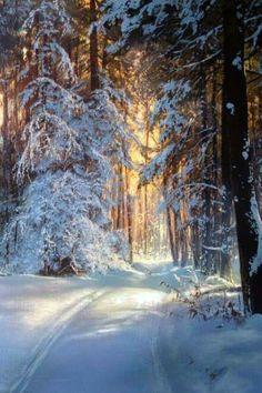 Landscape Pictures, Nature Pictures, Landscape Paintings, Winter Scene Paintings, Winter Painting, Pictures To Paint, Cool Pictures, Beautiful Pictures, Winter Love