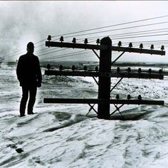 """""""I believe there is a train under here somewhere!""""  A March 1966 blizzard nearly buried utility poles in North Dakota. This is a lot of snow! Image Credit: NOAA Photo Library, Photographer: Mr. Bill Koch, North Dakota State Highway Dept. From the collection of Dr. Herbert Kroehl, NGDC."""