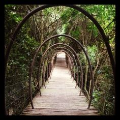Bridge in Africa Knysna, Places To Travel, Places To See, Gap Year, Garden Bridge, South Africa, Beautiful Places, Adventure, City