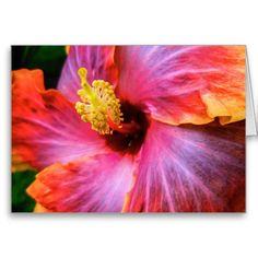 SoCal Hibiscus ~ Greeting Card