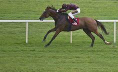 Brendan Brackan (Colin Keane) win the Platinum Stakes Cork Photo: Patrick McCann 05.08.2014 Trainer:G.M.Lyons