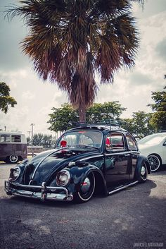 My brother loves VW beetles, and he has Asphurgars. I love him to death and wish people would treat him the way he treats everyone else. Love you Bro! Vw Bugs, My Dream Car, Dream Cars, Kombi Pick Up, Vw Modelle, Vw Camping, Kdf Wagen, Hot Vw, Vw Classic