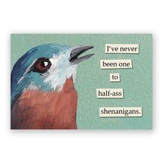 Shenanigans Magnet - Bird - Humor - Gift - Mincing Mockingbird - Stocking…