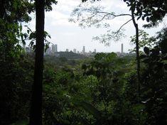 Photo of Metropolitan National Park
