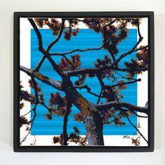 "Overflow series: ""Blue Sky"" 24 x 24 inch, digital art & gloss and matte gel on stretched canvas. 26.5 x 26.5 inch, float frame - black flat. ---------------------------------------- #popart #popartist #digitalart #contemporaryart #colorfield #abstractart #gloss #matte #art #canvas #jonsavagegallery"