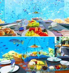 Amazing dining experience at  Anantara Kihavah Maldives Luxury resort  #Sea #Fire #Salt #Sky #Anantara_Kihavah