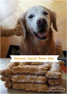 Salmon is a favorite meal in my household. Mom usually set a side a small unseasoned portion for me and mixed it with my meal. This time she decided to make a special salmon treat for me. Salmon is...
