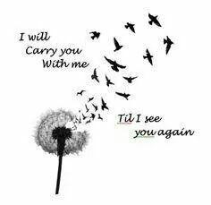 Til I see you again