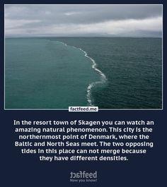 Where two seas meet...
