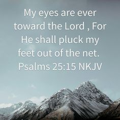My eyes are ever toward the Lord , For He shall pluck my feet out of the net. Psalms 25 NKJV