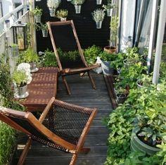 aménagement du petit balcon avec un mur de plantes vertes