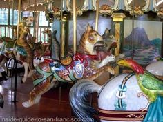 I always rode the cat  at the San Francisco zoo