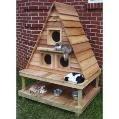 1000 Images About Pets DIY Toys Training Set Ups And More On Pinterest