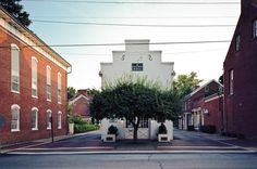 something about the tree guarding a library. Shepherdstown Public Library in Shepherdstown, W.Va. (2011)
