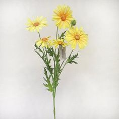 This artificial Daisy flower spray with yellow petals is as realistic as the real thing. It measures from top to bottom (includes of leaves and yellow flowers, bare stem). Yellow Daisies, Flower Spray, Artificial Flowers, Daisy, Leaves, Floral, Plants, Top, Beautiful