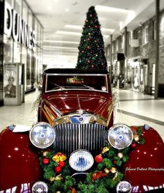 Car Decorated for Xmas 1