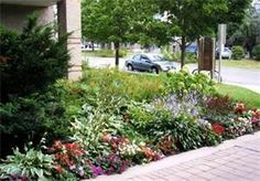 Small Front Garden Ideas - Bing Images