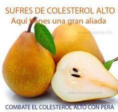 Si tu problema es el Colesterol alto, tienes que agregar en tu dieta esta fruta.  #pera #peral #frutas #obesidad #dietas #gota #dolores #colesterol #anemia #sistemaoseo #huesos