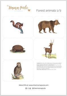 Kostenlose Druckvorlagen: Tiere im Wald - Chez Mama Poule