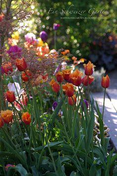 Ein Schweizer Garten: Veranda