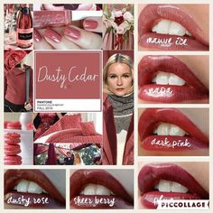 Gorgeous Fall Lipsense colors.  Contact me to pick out one of our Limited Edition Tuscany Collection colors before they are sold out! Lipsense is #waterproof and will not kiss-off, smear-off, rub-off or budge-off!