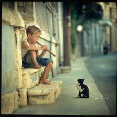 Kitten music
