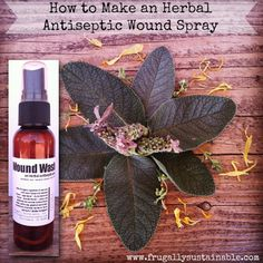 ❤ We've discovered a great formula for an antiseptic wound spray. This would be a wonderful addition to a herbal home remedy chest! Click the link to learn how it's made. ❤