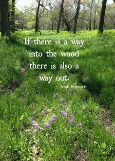 """It is then when we are beginning to give up and just give in to the negativity that we must stop ourselves and remember this very important thing: ""If there is a way into the wood, there is also a way out."" (Irish proverb)"" From ""Feeling Stuck"" by Sarah Beth Bowman.  #quote #quotes #life #positivity #negativity #choice #choices #proverb"