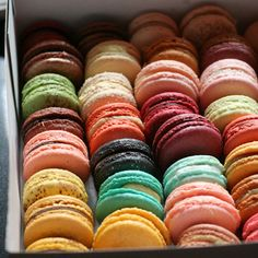 If you have never tasted a Macaron you have NOT lived!!