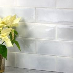 Transform the old look of your indoor walls with the help of this extra ordinary Ivy Hill Tile Piston Camp White Glazed Ceramic Subway Wall Tile. Glazed Ceramic Tile, Ceramic Subway Tile, Glass Subway Tile, Porcelain Tile, Industrial Tile, Best Floor Tiles, Marble Mosaic, Stone Mosaic, Style Tile
