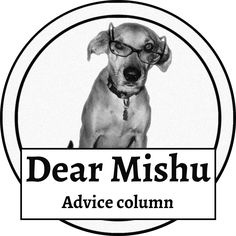 How can I change my life, Jasmin asks, Mishu answers » Dear Mishu: Live Life Free, Happy, and Bold