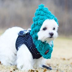 Tks mom! I know it is warm but..... it looks ridiculous ... #funnyface #sweater…