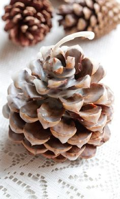 Diy pinecone fire starters of beeswax coats about 18 smallish pinecones. dip multiple times for the white appearance. Winter Wedding Favors, Rustic Wedding Favors, Wedding Favors For Guests, Wedding Ideas, Trendy Wedding, Woodland Wedding, Autumn Wedding, Wedding Inspiration, Pine Cones For Sale