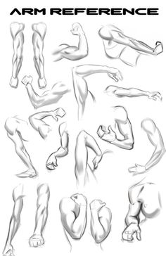 Lots Of Arms for Reference. by N3M0S1S.deviantart.com on @DeviantArt