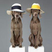 Man and Woman Hats   BORSALINOS MAGAZINE