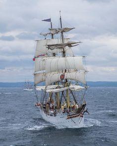(69) The Tall Ships Races Kristiansand 2015
