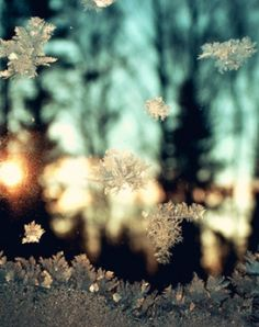 Snowflakes Falling #Light