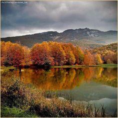 """""""#Autunno alle porte"""" La PicOfTheDay #turismoer di oggi ammira tutte le sfumature di stagione al Passo del #Cerreto, sull'#Appennino Reggiano. Complimenti e grazie a @kristian_bal / """"#Autumn is here"""" Today's PicOfTheDay turismoer admires all the shades of season at Cerreto Pass, on #ReggioEmilia's #Apennines. Congrats and thanks to kristian_bal"""