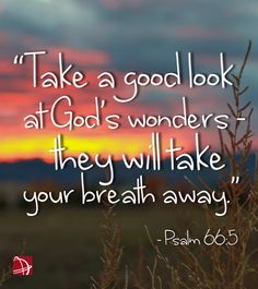 Psalm 66:5 ~ Take a good look at God's wonders, they will take your breath away...