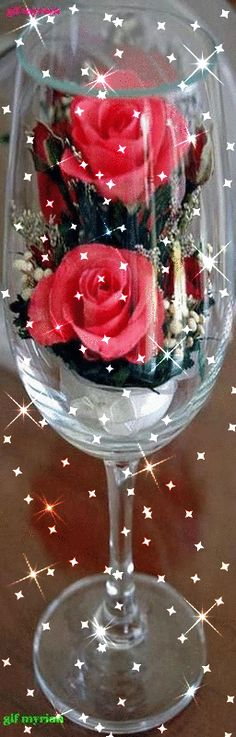 Wonderful Photo Birthday Flowers friend Tips If you want some sort of careful plus fun special birthday treat with regard to someone or cherished Beautiful Flowers Wallpapers, Beautiful Rose Flowers, Beautiful Gif, Love Rose, Roses Gif, Flowers Gif, Gift Flowers, 17th Birthday Gifts, Birthday Gifts For Girls
