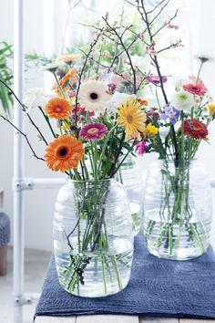 Komende maand staat de gerbera centraal op de Bloemenagenda. Deze bloem brengt een grote dosis vrolijkheid in huis! Haar frisse kleur en speelse vorm passen bij ieder interieur en iedere gebeurtenis, dus met gerbera's zit je altijd goed.   http://www.mooiwatbloemendoen.nl/gerbera